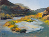 "Island in the Rio Grande         9""x12""       Oil   Plein Air"