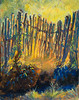 "Fence Sunrise Glow   11""x14""   Oil"