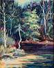 "Turkey Creek                 8""x10"" oil  Plein Air"