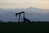 Oil Field-0013