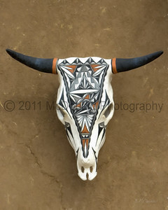 "Cow Skull from Taos Pueblo  16 x 20""."
