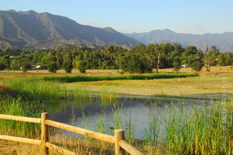 ojai valley meadows preserve