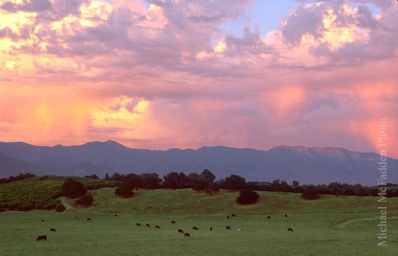 Pink Moment Ojai Valley  Color of Ojai   , Light & Spirit
