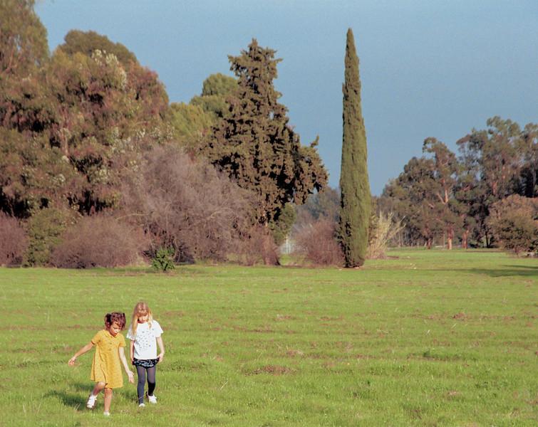 besant meadows-2