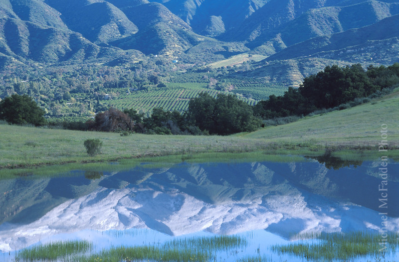 Reflection of Topa Topas Vernal Pool Ojai Valley  Color of Ojai