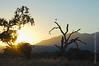ojai meadows sunset