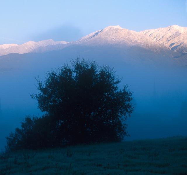 oak view snow 2