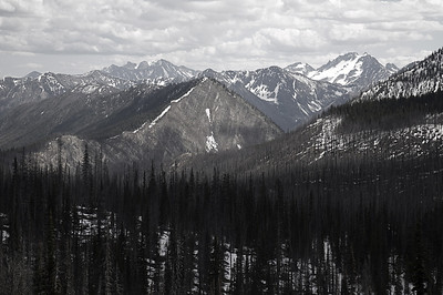 The view from atop Hart's Pass