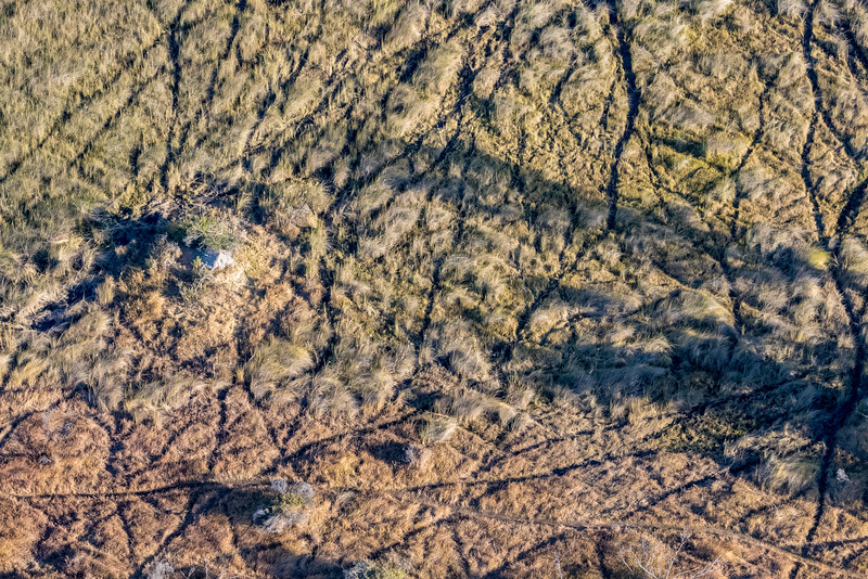 Above Moremi reserve, Okavango Delta, Botswana.  Animal trails form abstract patterns on the grassland.