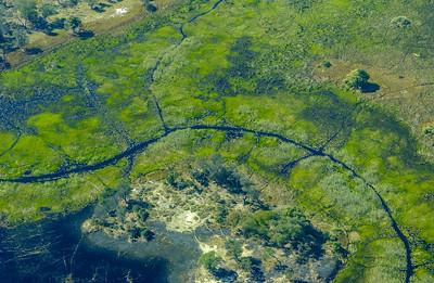 Okavango Flood Plain and Game Trails