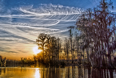 Contrails in the Sunset Okefenokee Swamp