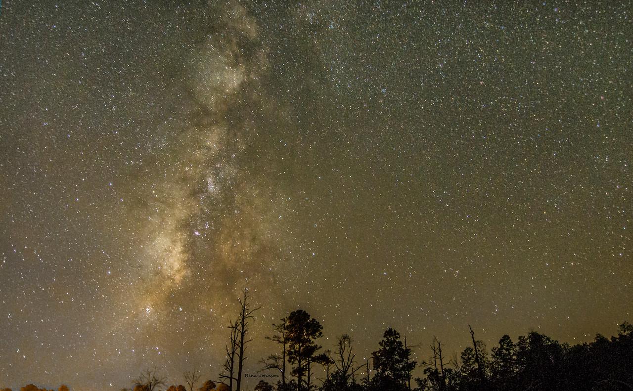 Milky Way Galaxy Stephen C Foster Okefenokee Swamp