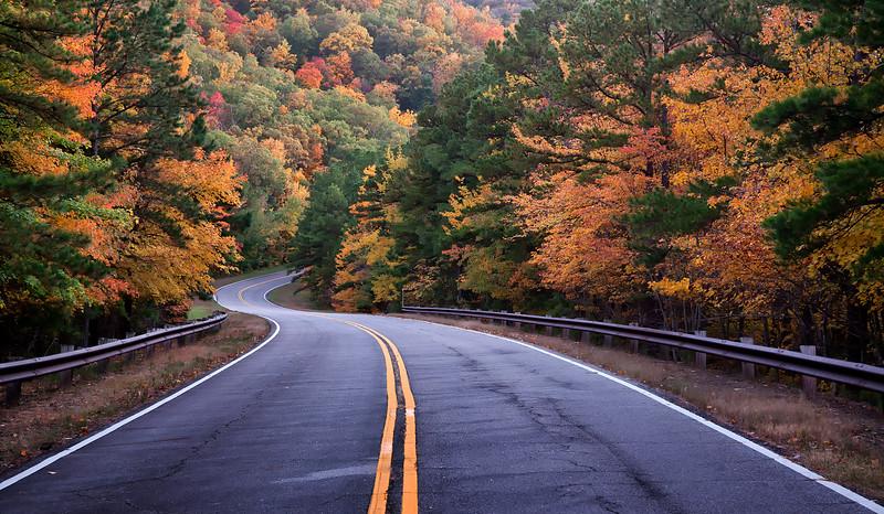 Talimena Scenic Drive - Fall
