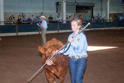 ok_state_fair_20190914_cattle-14