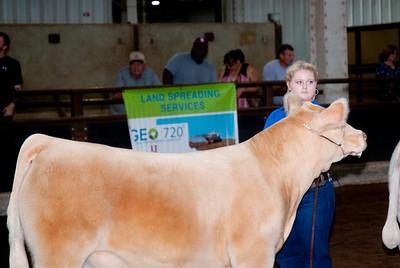ok_state_fair_20190914_cattle-22