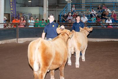 ok_state_fair_20190914_cattle-20