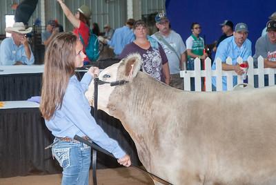 ok_state_fair_20190914_cattle-12
