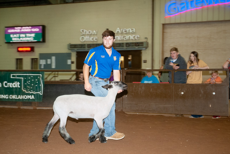 ok_state_fair_20190914_lambs-23