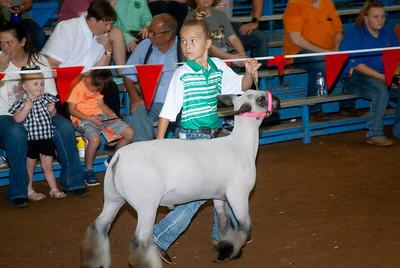 ok_state_fair_20190914_lambs-14