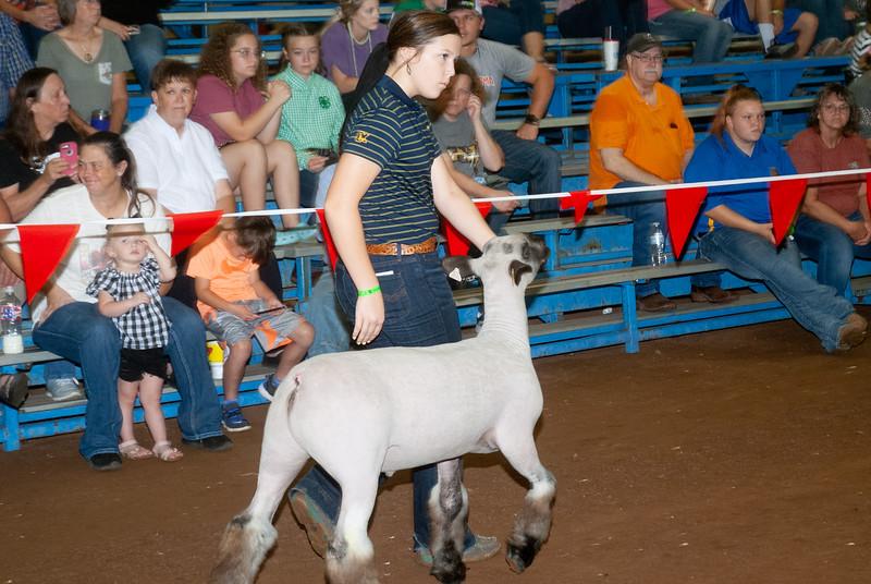 ok_state_fair_20190914_lambs-16