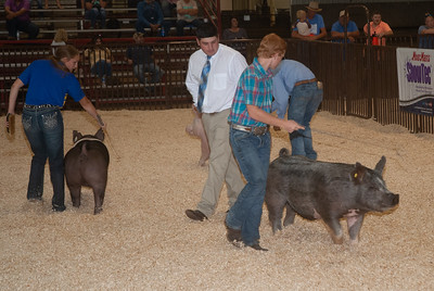 ok_state_fair_swine_showmanship-2