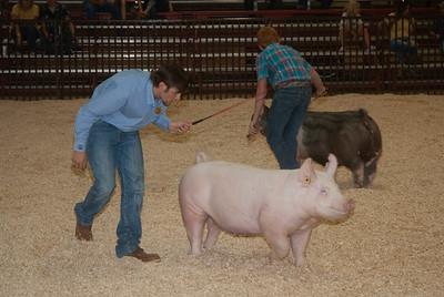 ok_state_fair_swine_showmanship-3