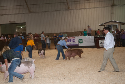 ok_state_fair_swine_showmanship-8