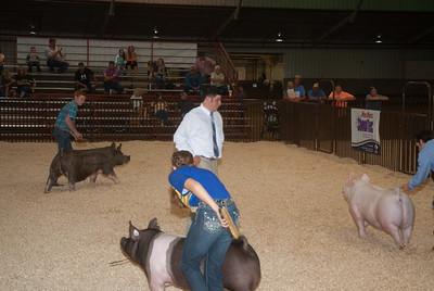ok_state_fair_swine_showmanship-1