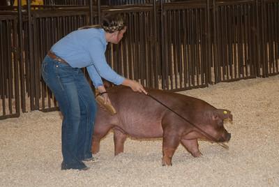 ks_state_fair_2019_swine-6