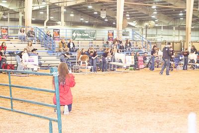 around-the-barns-20200313-3