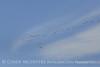 Sandhill cranes migrating, Wichita Mts OK (1)