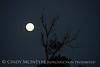 Full moon, east range Fort Sill 4-21-16 (9)