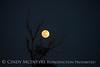 Full moon, east range Fort Sill 4-21-16 (10)