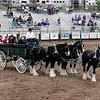 Guymon_rodeo15 5-1-10