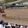 Guymon_rodeo60 5-1-10