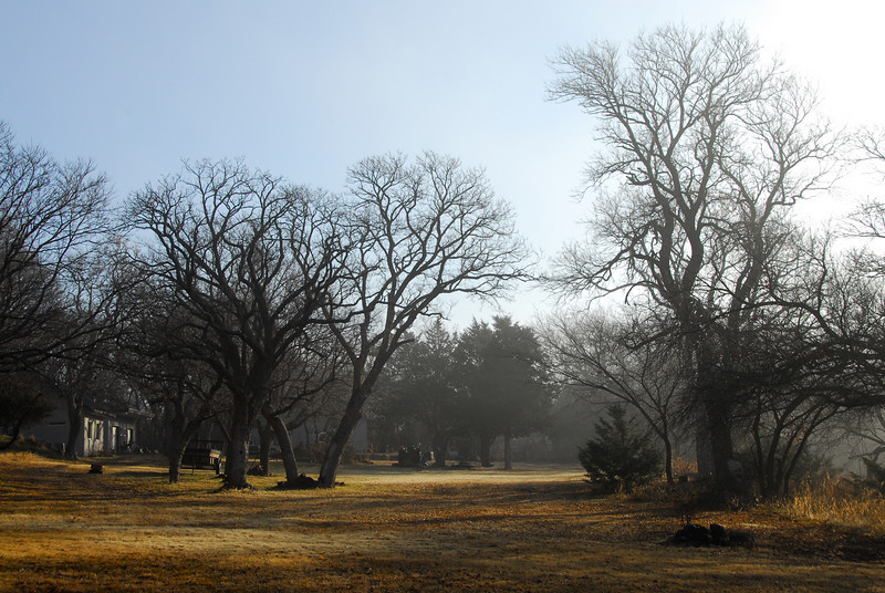 Foggy morning at the parent's house (black rocks).
