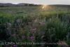 Sunset Wichita Mountains, OK (2)