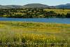 Jed Johnson Lake views, Wichita Mts OK (10)
