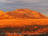 Mt Scott sunset, Wichita Mts NWR OK (4)