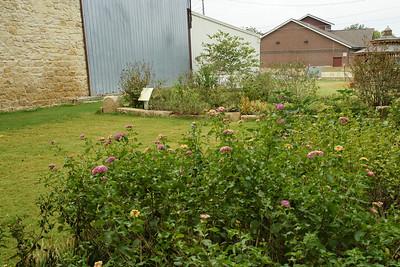Plant garden in City Park
