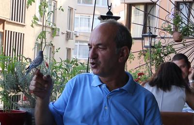 Ali Aykut