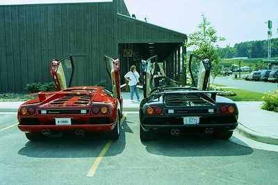 Our red diablo and George's black diablo