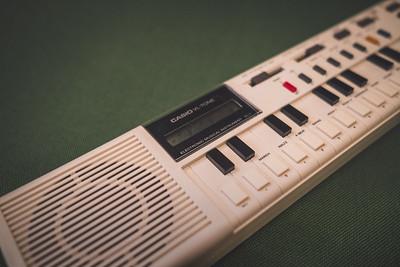Casio VL-1
