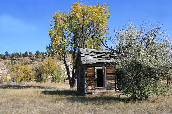 Old Mountain Cabin_SS85214