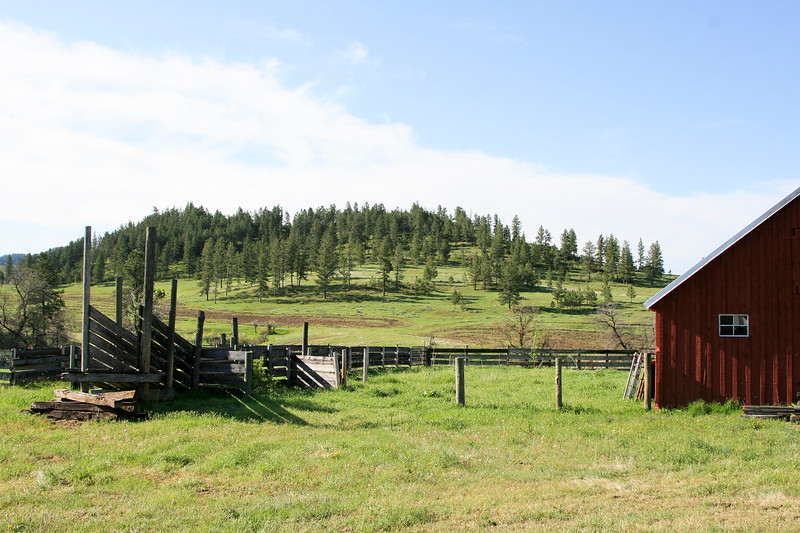 Red Barn and cattle pens_SS85313