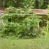 OldFarmhouse_7741