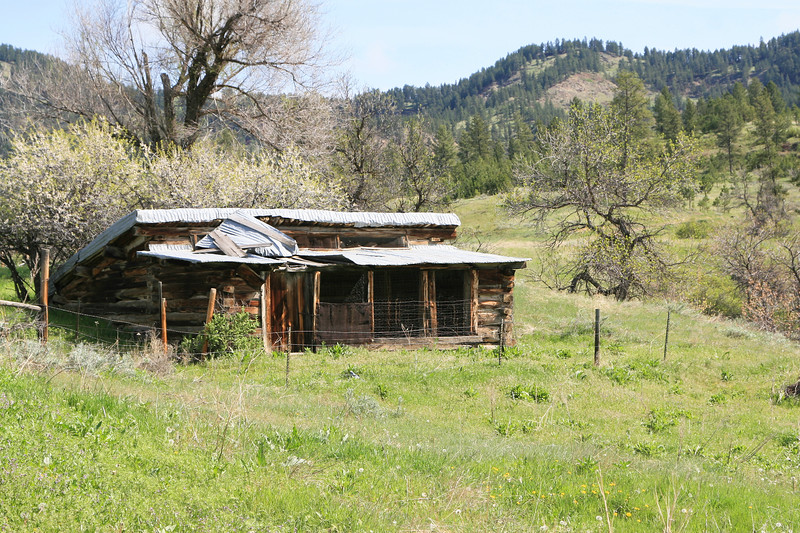 Old log cabin_SS85039