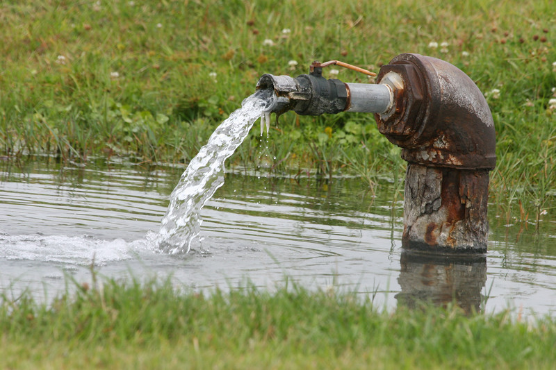 An artisian well flows on a cattle ranch in rural Okeechobee County.