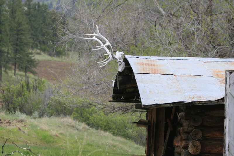 Old Mountain Cabin_SS4946