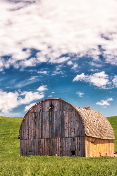Farm life. (vertical)